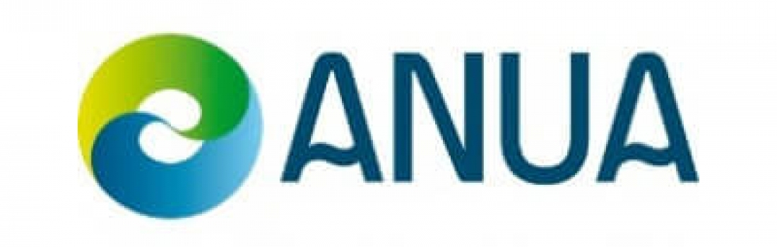 Anua International