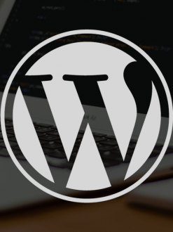 Quarterly WordPress Maintenance